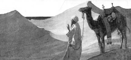 (0702) Came Upon Three Sandhills
